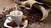 ARFA - kavinė, banketai, furšetai, gedulingi pietūs, maisto pristatymas į namus Tauragėje