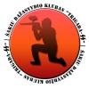 TRIGADA SS, Šakių dažasvydžio sporto klubas