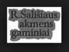 ALYTAUS PAMINKLAI, R. Sališiaus IĮ, paminklų dirbtuvės