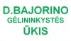 D.BAJORINO GĖLININKYSTĖS ŪKIS - vienmetės, vasarinės gėlės Kaune
