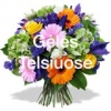VILIMA, gėlių salonas, J. Vilimienės firma
