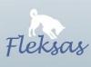FLEKSAS, UAB