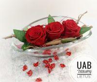 ŽIEDLAPIŲ LIETUS, UAB - visos laidojimo paslaugos, gėlės, vainikai Joniškėlyje, Pasvalyje