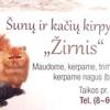 ŽIRNIS - ŠUNŲ IR KAČIŲ KIRPYKLA