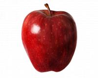 VIGANDO GRIGO MEDELYNAS - vaismedžių, vaiskrūmių, vynuogių sodinukai Utena