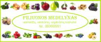 PILIUONOS MEDELYNAS - vaismedžiai, vaiskrūmiai, uogakrūmiai  Kauno rajone