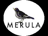 MERULA, UAB