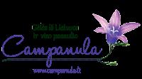 CAMPANULA Babravičienės firmos parduotuvė - gėlės stoties rajone Vilniuje