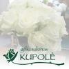 KUPOLĖ, gėlių salonas, A. Švedarausko IĮ - puokštės, vainikai, gėlės Panevėžyje