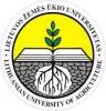 ALEKSANDRO STULGINSKIO UNIVERSITETAS, Informacijos technologijų institutas
