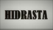 HIDRASTA, V. Razumčik įmonė
