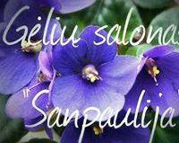 SANPAULIJA, UAB - gėlių salonas