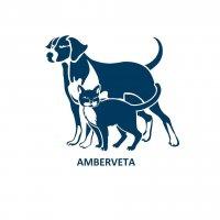 AMBERVETA, MB - veterinarijos gydykla Šilutėje